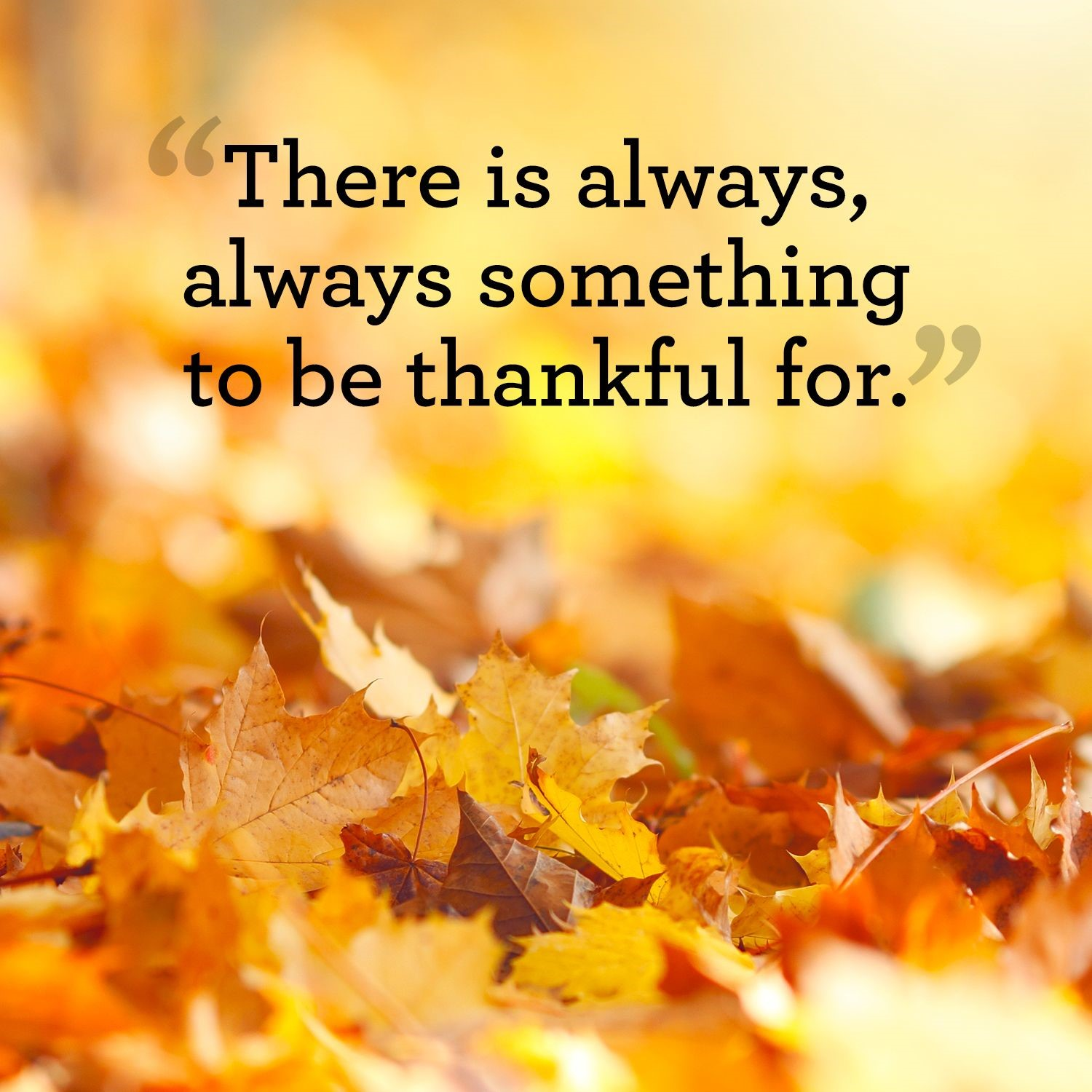 inspirational quotes thanksgiving